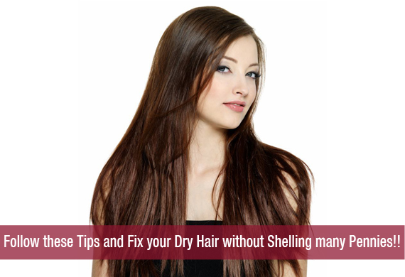 Follow these Tips and Fix your Dry Hair without Shelling many Pennies!!