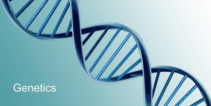 3-genetics