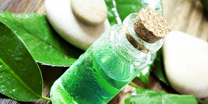 Add-tea-tree-oil-in-shampoo