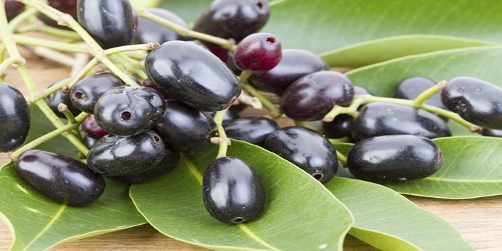 Benefits Of Jamun1