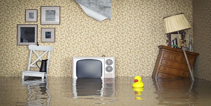 5 Things You Should NEVER Keep at Home According to Vaastu Shastra ...