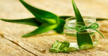 Top Six Benefits Of Using Aloe Vera For Gorgeous Skin And Hair