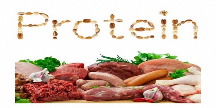 Proteins are best for you