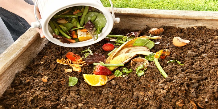 Use the waste for compost