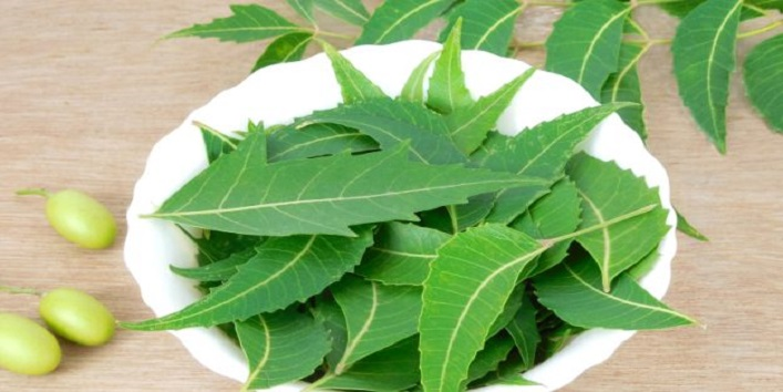 Apply the paste of neem leaves and turmeric powder