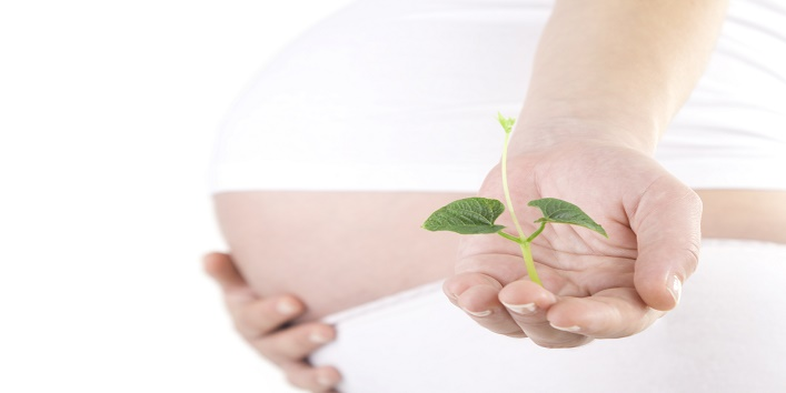 Adverse-effect-on-fertility