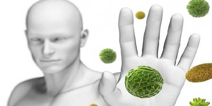 Boosts immunity